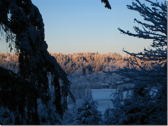 Snowy sunrise behind Chateau Saint Michelle